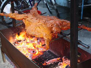 星期六自助烧烤活动开始报名了...烤全羊、院内池塘鲫鱼现捕现烤